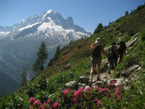 Altitude Blog - Chamonix hikers in the summer time